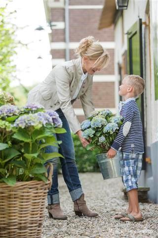 Boomkwekerij Lendert de Vos uit Reeuwijk